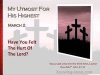 Have You Felt The Hurt Of The Lord?